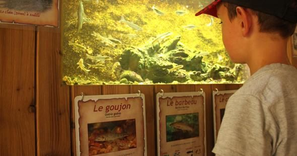 Aquariums du Lavoir