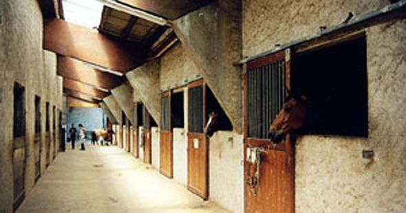 Centre Equestre Poney Club de Montmorillon
